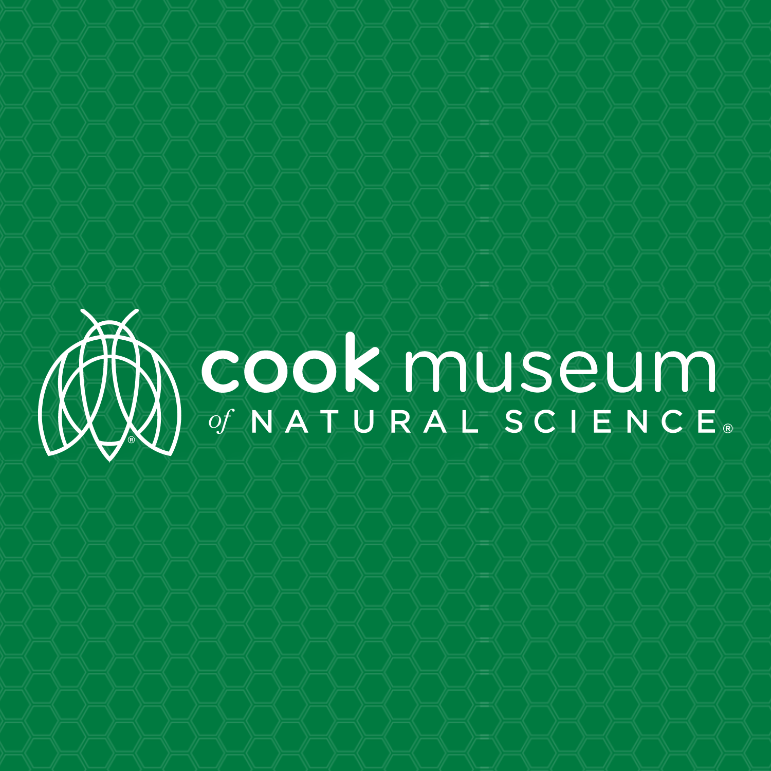 The Cook Museum